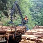 フォワーダによる木材運搬作業