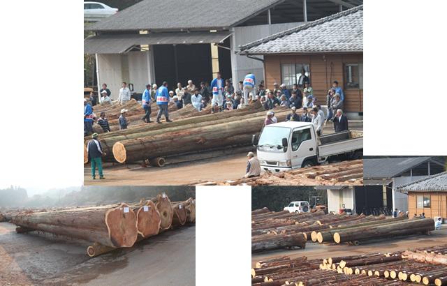 小国郷優良材市の集荷した材と市の状況